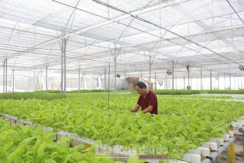 Đẩy mạnh thu hút các nguồn đầu tư vào nông nghiệp