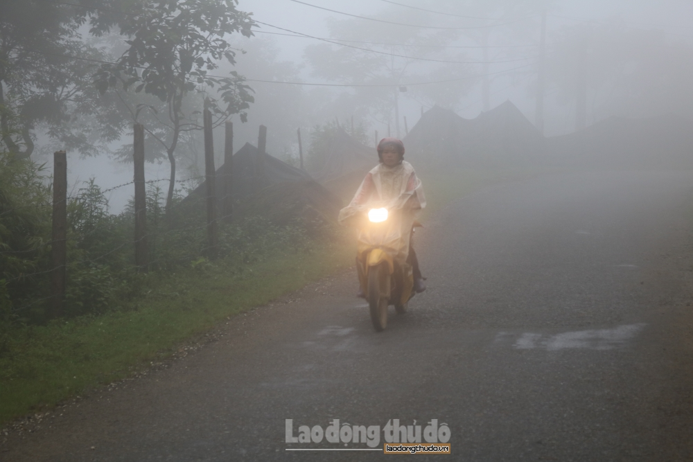 Sương mù phủ kín Sa Pa những ngày hè