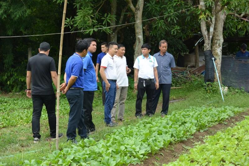 Đoàn tình nguyện tuổi trẻ Thủ đô đạt nhiều thành tựu xuất sắc
