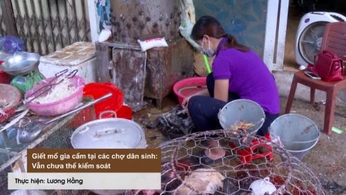 Giết mổ gia cầm tại các chợ dân sinh: Vẫn chưa thể kiểm soát