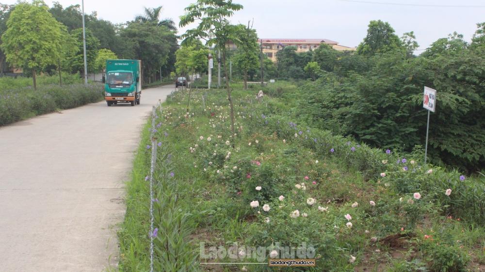 Hà Nội dự kiến huy động 89 nghìn tỷ đầu tư phát triển nông nghiệp, nông thôn