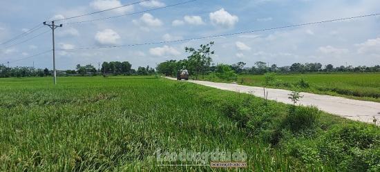 Nhiều thành tựu trong quá trình xây dựng nông thôn mới tại xã Tốt Động
