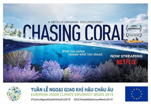 """""""Truy tìm rạn san hô"""" một bộ phim thú vị với giới trẻ"""