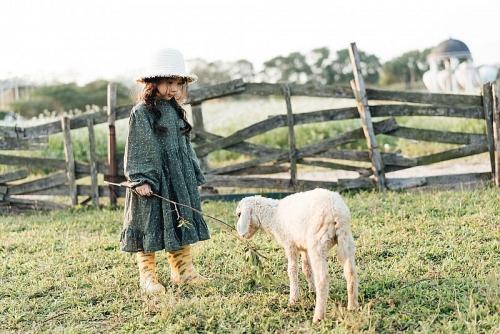 Say nắng với bộ ảnh 'Cô gái nhỏ trên thảo nguyên'