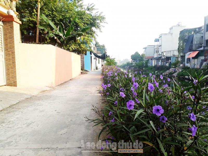 Huyện Thanh Trì nâng cao chất lượng xây dựng nông thôn mới