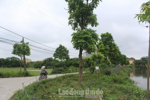 Trả lời kiến nghị của cử tri huyện Thanh Trì về đền bù đất ao, vườn
