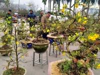 Hà Nội: Rộn ràng không khí Tết tại các hội chợ Xuân