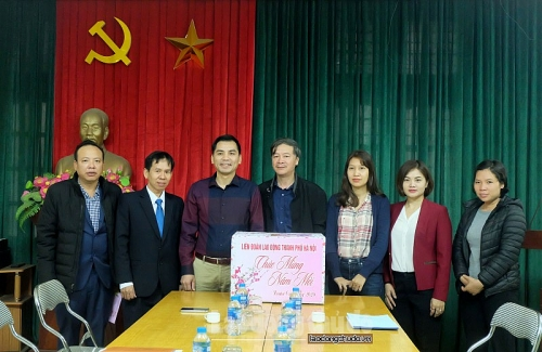 Thăm, tặng quà Tết tại Công ty Cổ phần giống vật nuôi Hà Nội