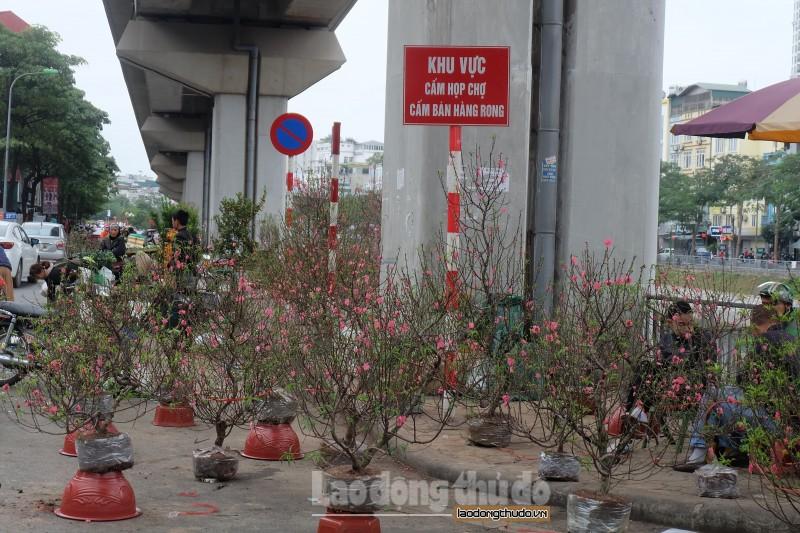 ga duong sat tren cao bien hoa thanh cho hoa