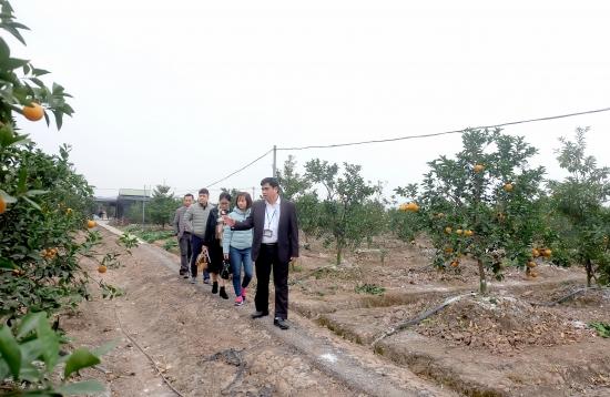 Xây dựng nông thôn mới là hành trình không có điểm dừng