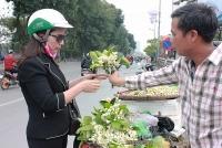 Hà Nội: Hoa bưởi giá cao vẫn hút khách
