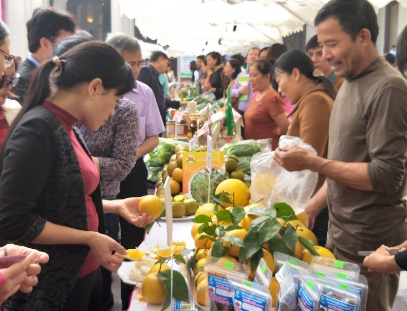 Hà Nội mở rộng tiềm năng cung ứng nông sản an toàn