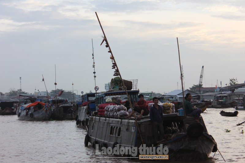 Chợ nổi Cái Răng – nét văn hóa đặc trưng miền Tây sông nước
