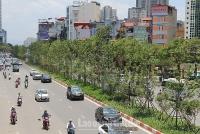 Hà Nội: Triển khai nhiều giải pháp để cải thiện môi trường không khí