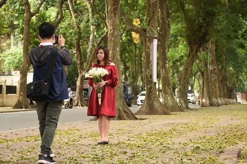 Phố Phan Đình Phùng đẹp nao lòng mùa lá đổ