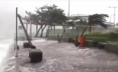 Sẽ có 5 - 6 cơn bão ảnh hưởng trực tiếp đến đất liền Việt Nam năm 2018