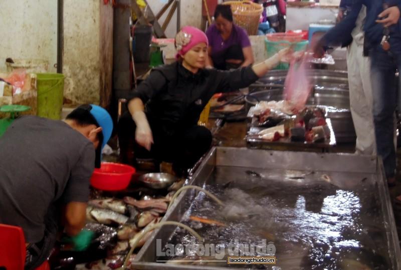 tang cuong quan ly viec kinh doanh su dung hoa chat khang sinh trong nuoi trong thuy san