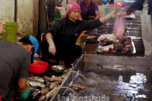 Tăng cường quản lý việc kinh doanh, sử dụng hóa chất, kháng sinh trong nuôi trồng thủy sản