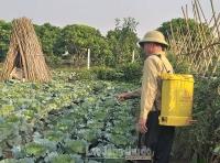 Việt Nam chính thức loại bỏ thuốc bảo vệ thực vật chứa hoạt chất Glyphosate