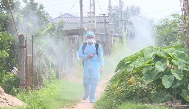 Phúc Thọ: Nỗ lực phòng, chống bệnh dịch tả lợn châu Phi