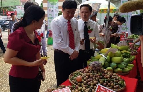 Tập trung phát triển chuỗi cung ứng nông sản bền vững