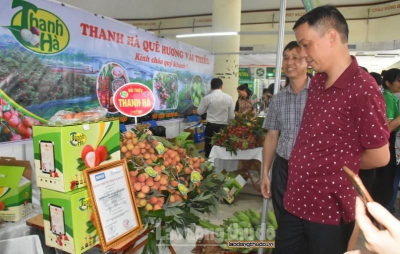 Đưa vải thiều Thanh Hà và nông sản an toàn đến với người tiêu dùng Thủ đô