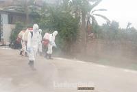 Triển khai quyết liệt, đồng bộ các giải pháp kiểm soát bệnh dịch tả lợn châu Phi
