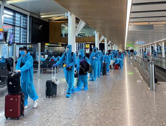 Cảnh giác với lời mời mua vé máy bay về nước tránh dịch Covid-19