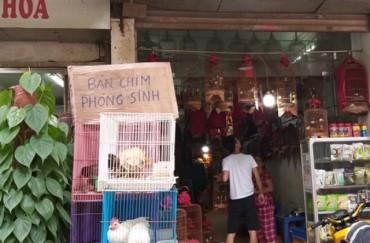 """Hà Nội: Nhộn nhịp """"khu phố chim"""" Hoàng Hoa Thám"""
