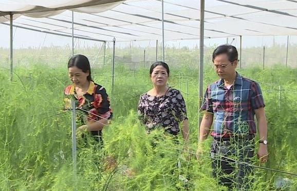 Từng bước nâng cao chất lượng cuộc sống của người dân nông thôn