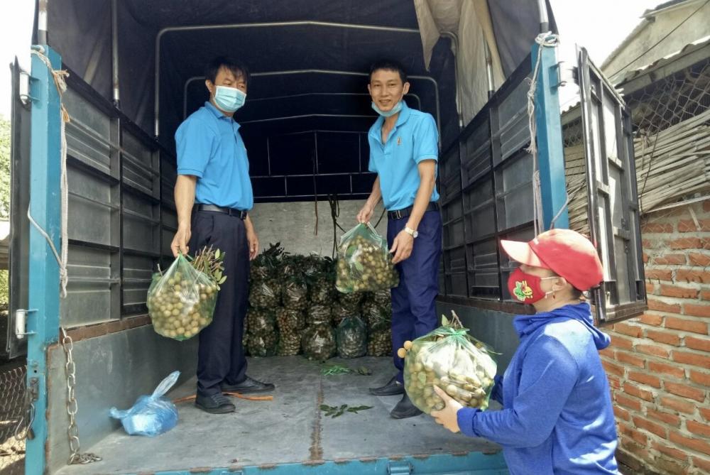 Các cấp Công đoàn huyện Phúc Thọ chung tay hỗ trợ nông dân tiêu thụ nông sản