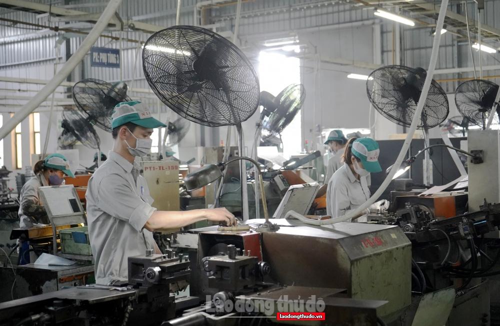 Kịp thời chăm lo cho đoàn viên, người lao động bị ảnh hưởng bởi dịch