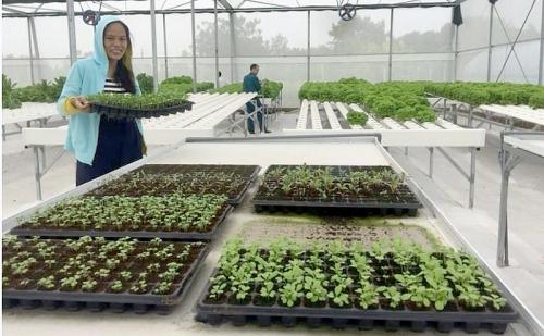 Đẩy mạnh kết nối sản xuất - tiêu thụ nông sản