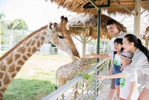 Khu sinh thái Mường Thanh Diễn Lâm: Thiên đường nghỉ dưỡng trong tầm tay