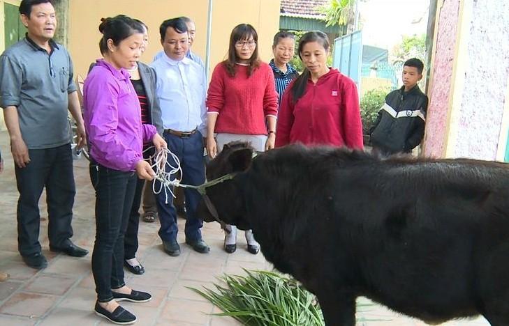 """Giúp người dân thoát nghèo nhờ dự án """"Ngân hàng bò"""""""