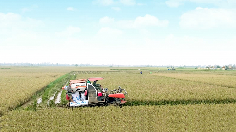 Bài cuối: Tiếp tục phát triển nông nghiệp, nông thôn theo hướng hiện đại, bền vững