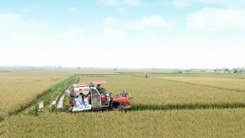 Triển khai các giải pháp để cơ cấu lại nền nông nghiệp và xây dựng nông thôn mới