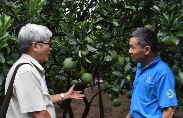Đẩy mạnh ứng dụng công nghệ cao để tăng hiệu quả sản xuất cây ăn quả