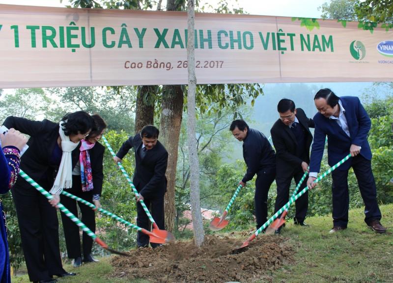 Hơn 80.000 cây xanh được trồng tại Khu di tích Quốc gia đặc biệt Pác Pó, Cao Bằng