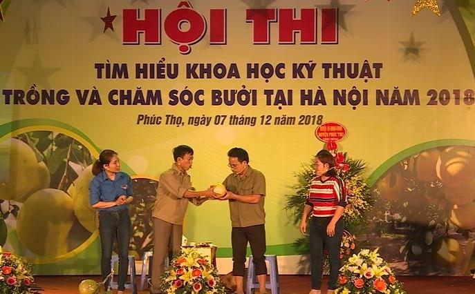 Sôi nổi hội thi Tìm hiểu khoa học kỹ thuật về trồng và chăm sóc bưởi tại Hà Nội