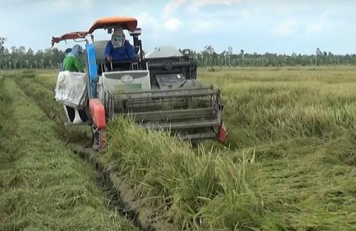 10 thành tựu nổi bật trong lĩnh vực Nông nghiệp & PTNT năm 2018