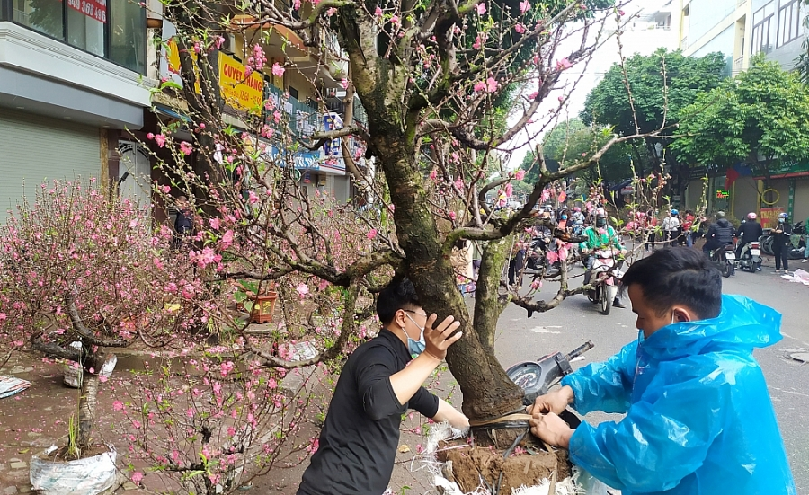 Chợ hoa tấp nập ngày cận Tết