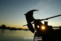 Bình minh trên bến Hải Bình
