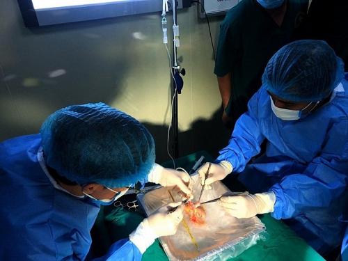 Bệnh viện tuyến tỉnh làm chủ kỹ thuật ghép tạng: Người bệnh hưởng lợi