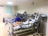 Gia tăng bệnh nhân bị viêm não Nhật Bản nhập viện
