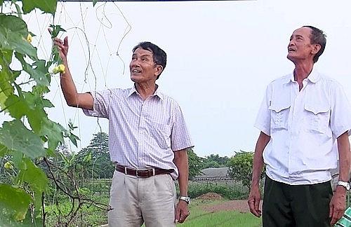 Ông Hoàng Văn Oánh: Tấm gương thương binh tàn không phế
