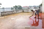 Chương Mỹ: Tập trung phòng chống dịch bệnh trong mùa mưa lũ