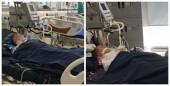 3 trẻ nhập viện trong tình trạng nguy kịch do bị ong đốt