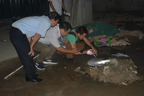 Hà Nội: Tìm diệt bọ gậy phòng chống sốt xuất huyết
