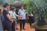Thực hiện hiệu quả công tác bảo vệ và chăm sóc sức khỏe nhân dân